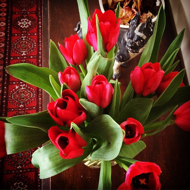 Red Tulips Still Life | thatwasthenthisiswow.com | instagram.com/paulaink166